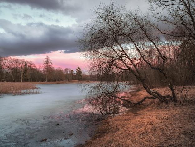 池のある絵のように美しい秋の風景。湖の上の木と氷と夕方の春の日没の風景。