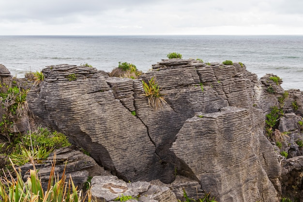 그림 같은 해안 파파 로아 국립 공원 뉴질랜드 남섬