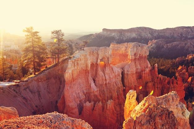 アメリカ合衆国ユタ州のブライスキャニオン国立公園の絵のように美しいカラフルなピンクの岩