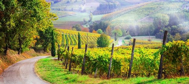 Живописная сельская местность и прекрасные виноградники пьемонте в осенних красках. италия