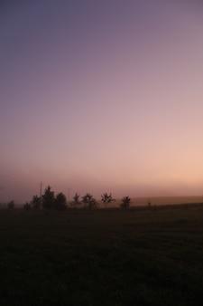 Живописный сельский пейзаж и фиолетовое восходящее небо летом