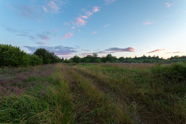 Живописный вечерний пейзаж сельской местности с небольшим полумесяцем летом.