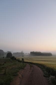 Живописное поле и живописный сельский пейзаж на рассвете летом