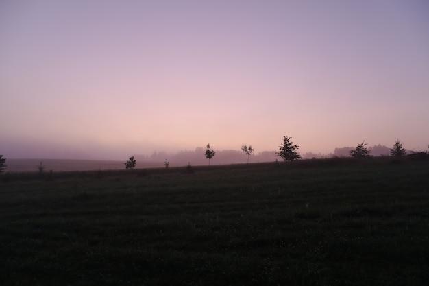 Живописное поле и живописный сельский пейзаж с фиолетовым восходом солнца летом