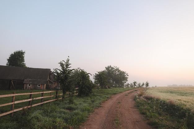 Живописное поле и живописная дорога в сельской местности на рассвете летом