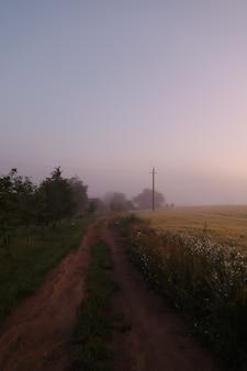 Живописное поле и живописная дорога в сельской местности на рассвете летом Premium Фотографии