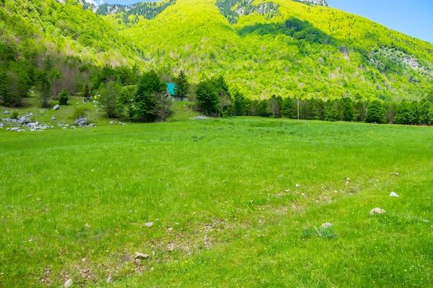 Picturesque green meadows near the big high mountains.