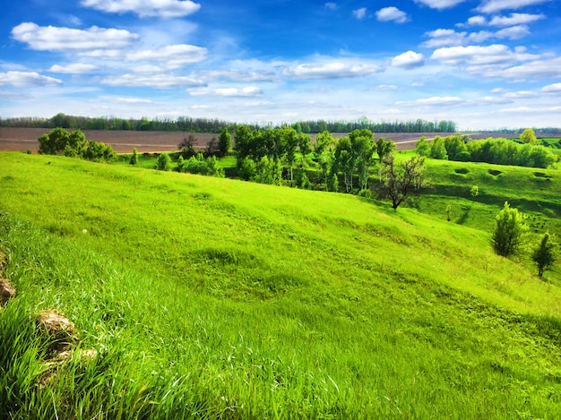 Picturesque hilly landscape with bright blue cloudy sky