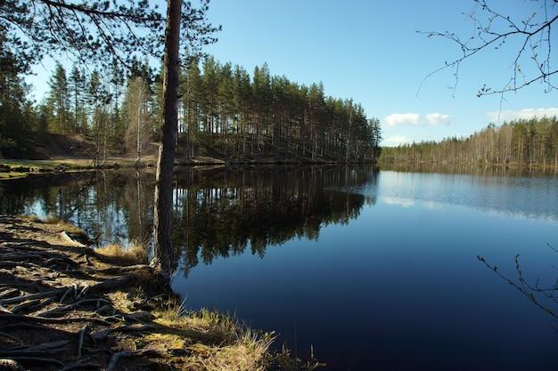 Живописное озеро в лесу с отражением неба.