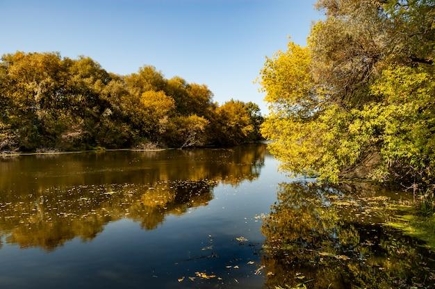 Живописный пейзаж спокойной чистой реки, расположенной между двумя берегами, с лиственными деревьями и пожелтевшей листвой в теплый осенний день на фоне голубого неба.