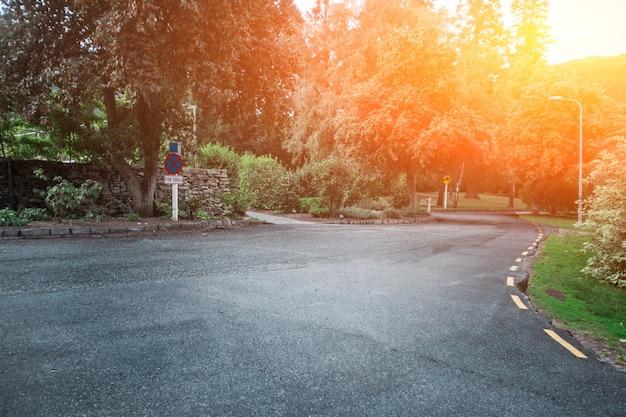美しい景観と道路上の日の出
