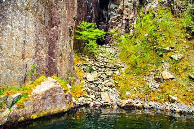 岩や木々のある美しい風景