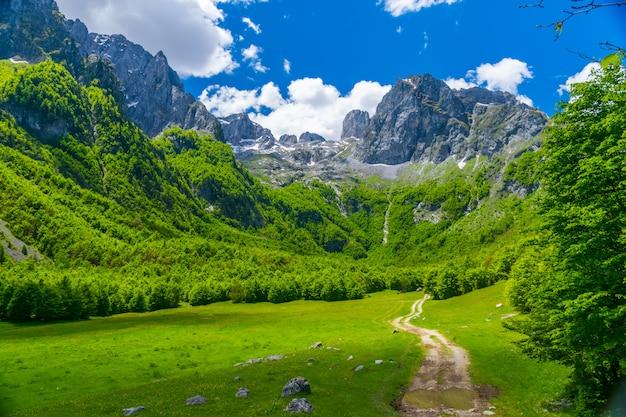 Живописные луга и леса расположены среди высоких гор.