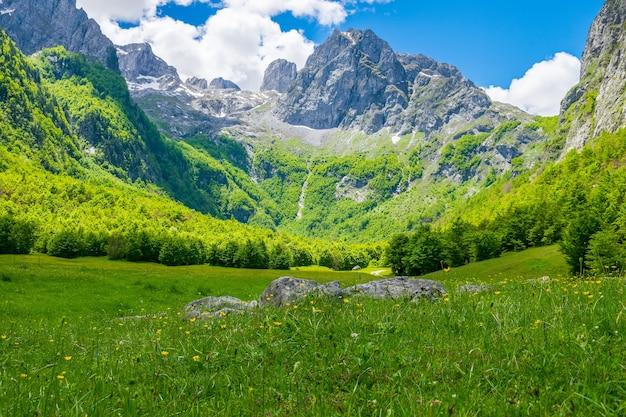 絵のように美しい牧草地と森は、高い山々の中にあります。