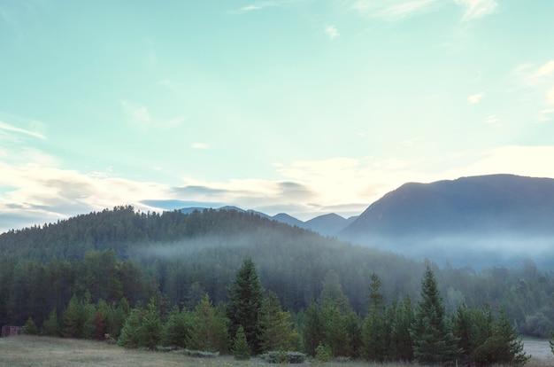 夏の雨の日の絵のように美しい山の風景。