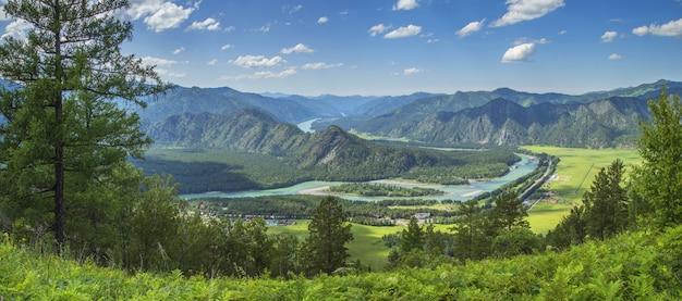 Живописная горная долина, река катунь, алтай, сибирь. летняя зелень, панорамный вид.