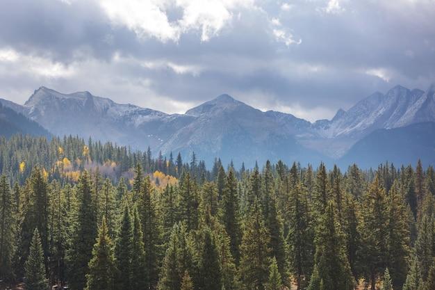 Живописный вид на горы в канадских скалистых горах в летний сезон