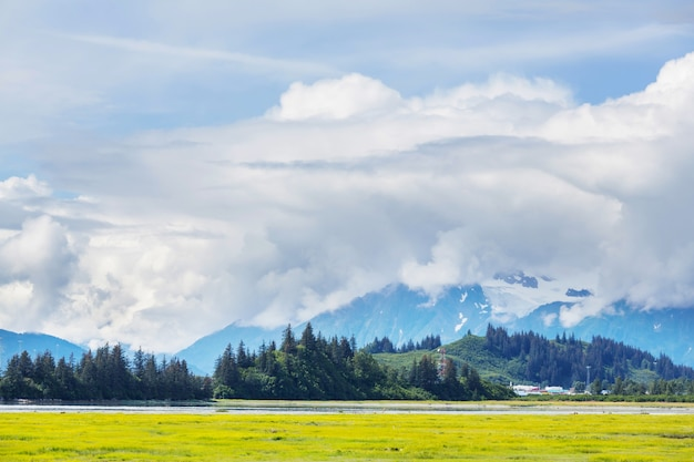 アラスカの美しい山々。雪に覆われた山塊、氷河、岩山。