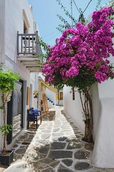 パロス島ギリシャの美しいナウサタウンストリート