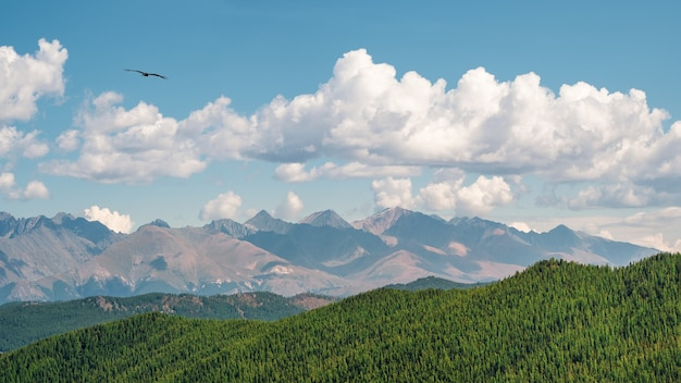 羽のような雲の下に山の壁と太陽に照らされた高い緑の針葉樹高原と絵のように美しいパノラマの日当たりの良い秋の風景。日光の下で素晴らしい山々。