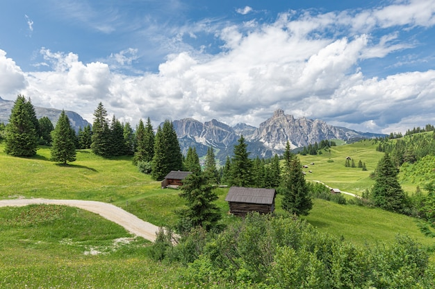 A picturesque path through an alpine meadow in the italian dolomites for hiking and cycling.