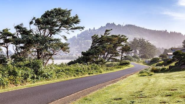 Живописная дорога вдоль побережья тихого океана в туманных горах на заднем плане побережье орегона сша