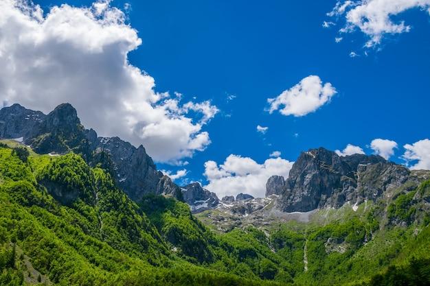 高山の絵のように雪をかぶった山頂