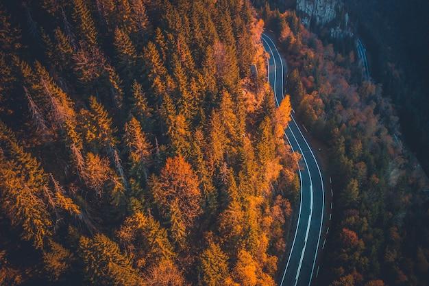 가을 산을 따라가는 그림 같은 스피드 웨이 프리미엄 사진