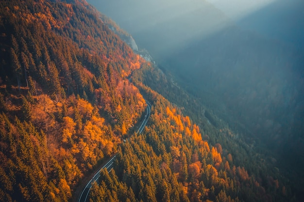 Picturesque speedway going along mountain at autumn