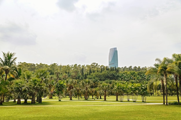 Picturesque tropical park in the center of the metropolis, china, shenzhen
