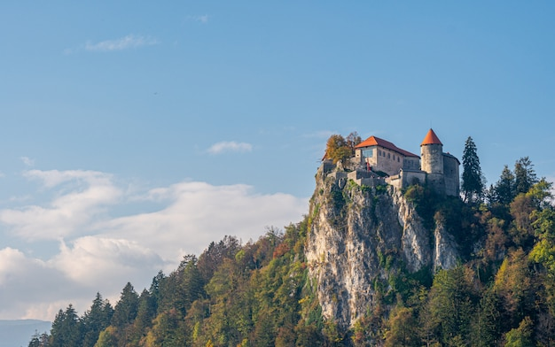 Живописный вид на бледский замок.