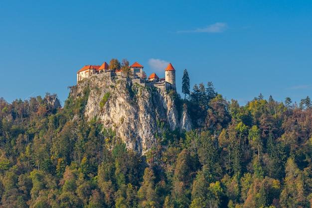 Живописный вид на знаменитый бледский замок.