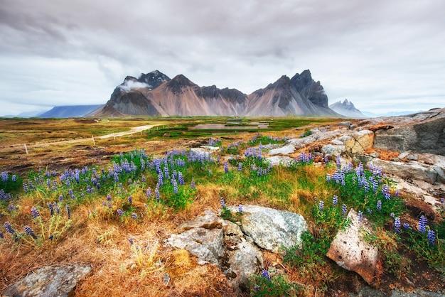 アイスランドの川と山の美しい景色