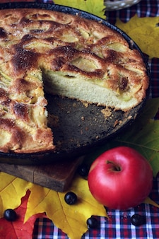 Pie of apples. charlotte. the cake in the pan and red apple on the table with a tablecloth in a cage.