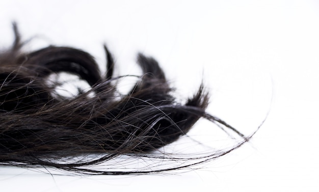 Piece of black hair on white isolated background