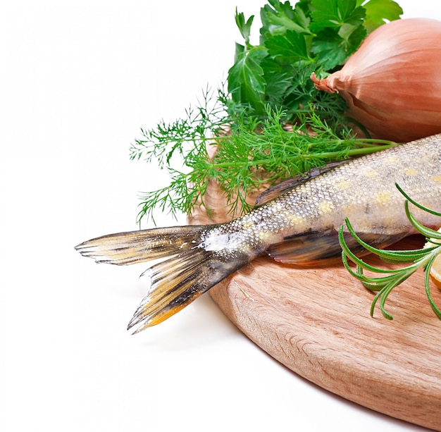 Piece of fresh raw fish in bowl