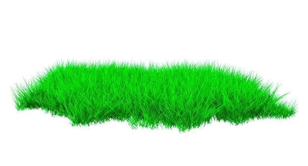 A piece of green lush grassy lawn