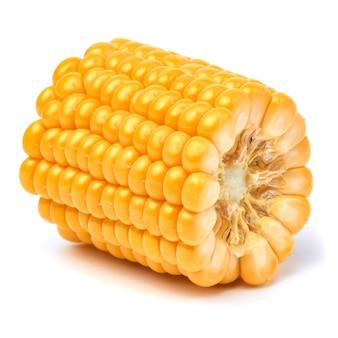 白で分離された新鮮な有機トウモロコシの穂軸の一部