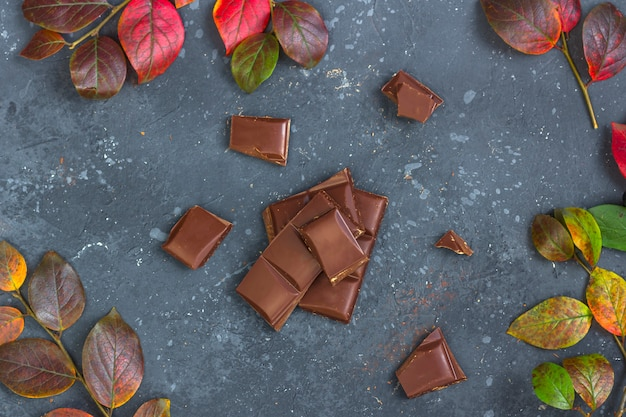 Pieces of dark chocolate and fall leaves on a dark . candy sweet dessert and snack. dark chocolate is an antioxidant and boosts energy and serotonin.