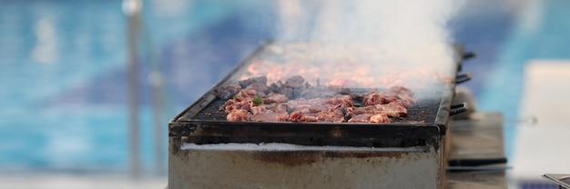 Кусочки свежего мяса запекаются на решетке крупным планом