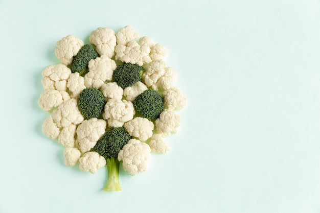 Pieces raw of broccoli and cauliflower in form of tree flat lay