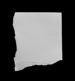 Pieces of torn paper texture background with copy space for text