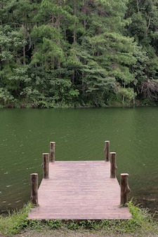 호수와 숲 배경에서 부두