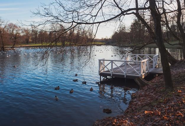 秋の湖の桟橋。