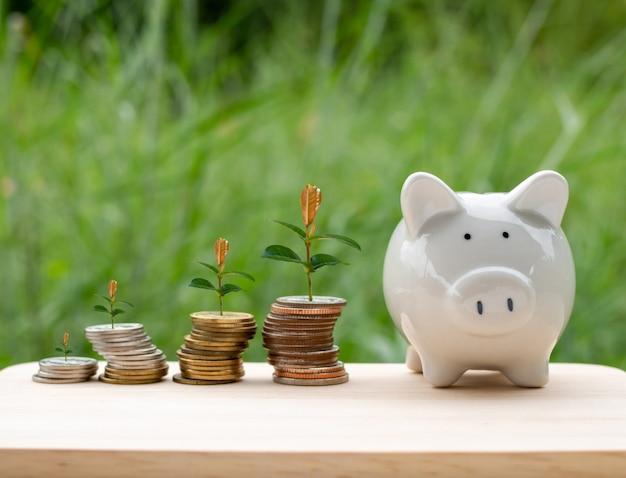 貯金箱とお金のコインが木のテーブルに置かれ、木が山に生えています