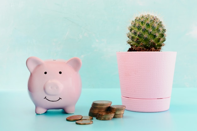 Piggy bank next to a cactus in a pink pot