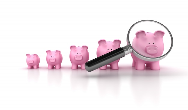 Piggy bank chart with magnifying glass