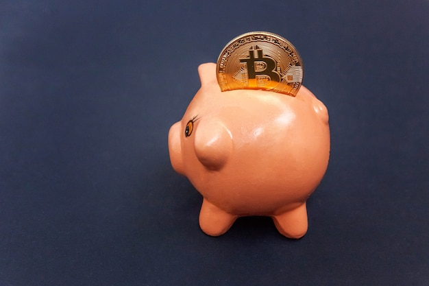 Piggy bank and golden bitcoin coin virtual money on black