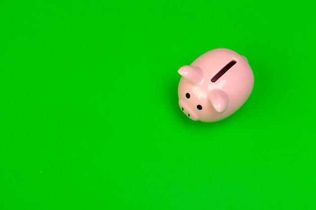 Piggy bank on green