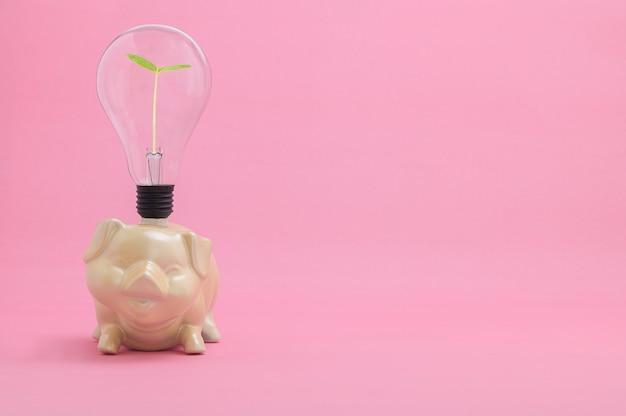 Идея копилки для экономии денег